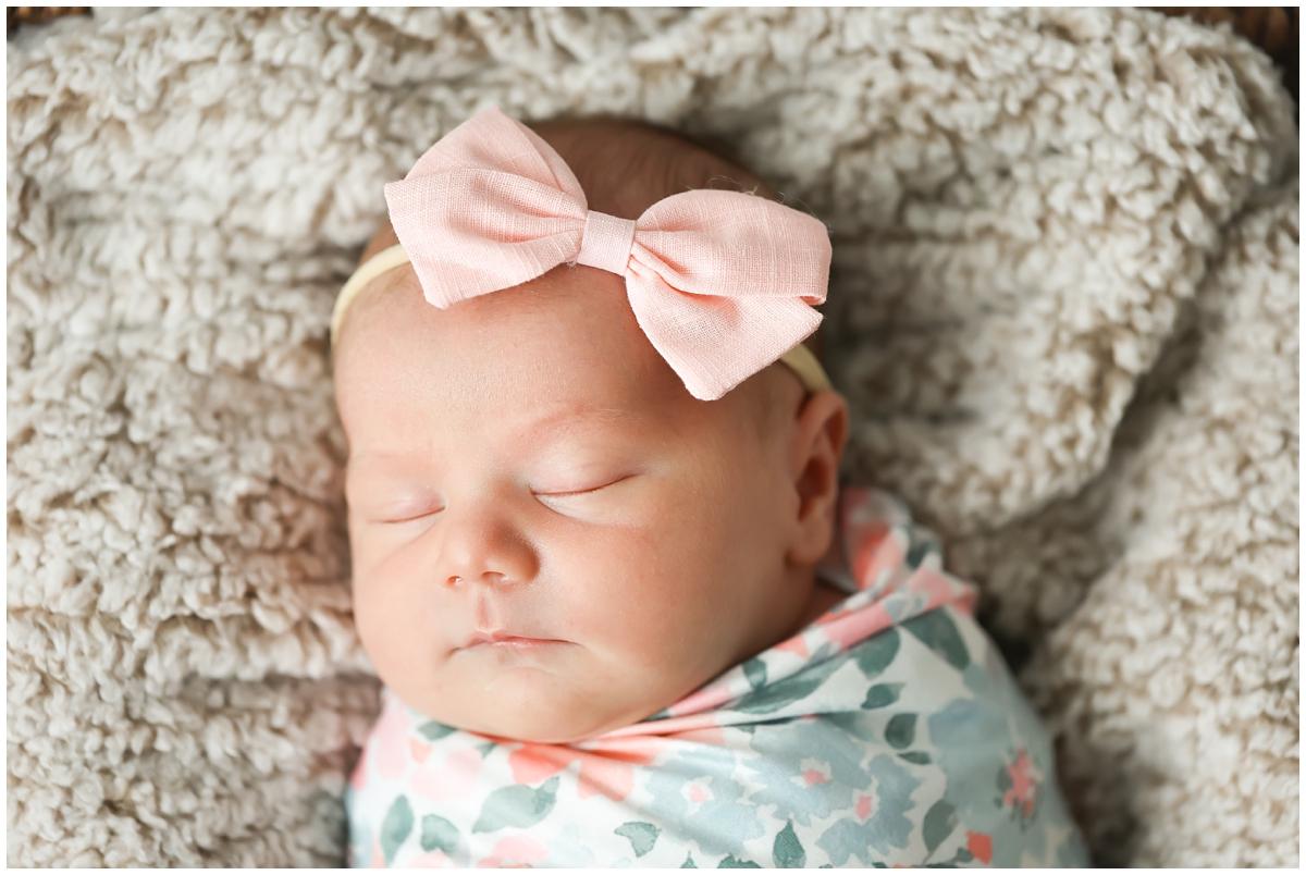 Westchase newborn photos